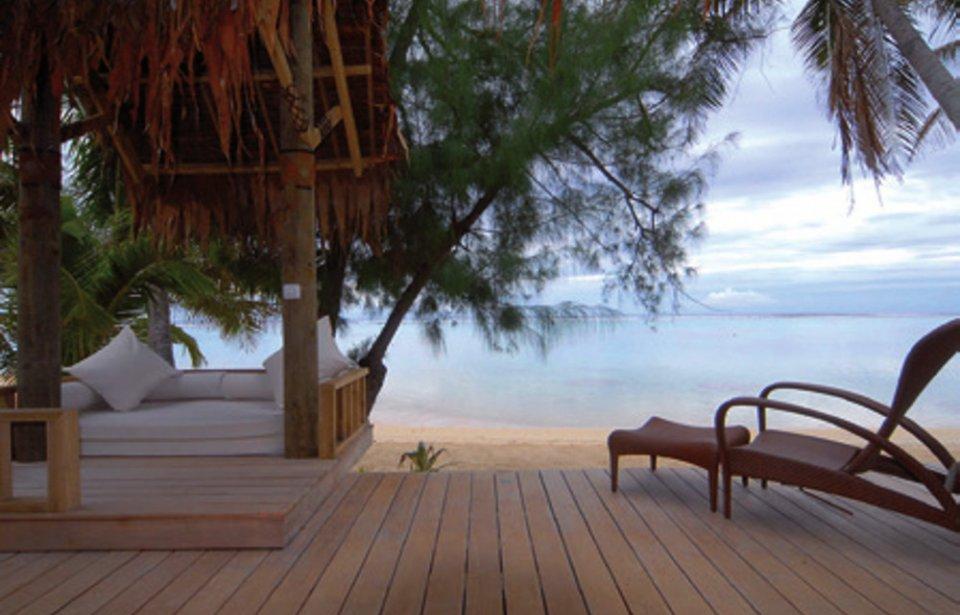 The Little Polynesian